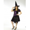 Witch Purple Punk Adult Plus